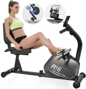 SNODE Magnetic Recumbent Exercise Bike R16